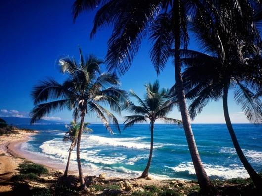 coast-of-paraiso_-dominican-republic1