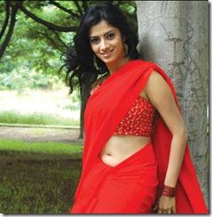 Sindhu Tolani in red saree