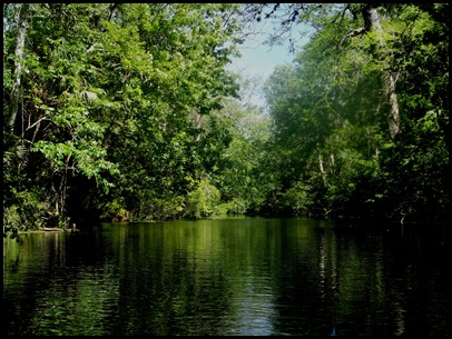 Wekiwa Springs State Park (73)A