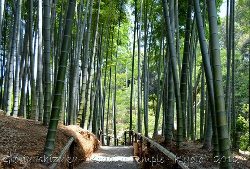 Glória Ishizaka - Kodaiji Temple - Kyoto - 2012 - 47