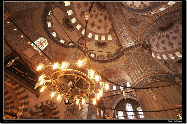 Turkey19