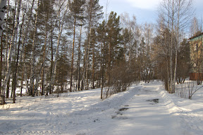 DSC 0184 Зима   общие виды