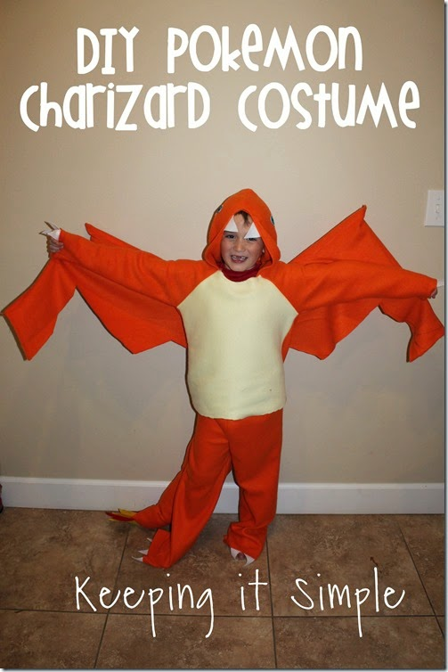 DIY Pokemon Charizard Costume