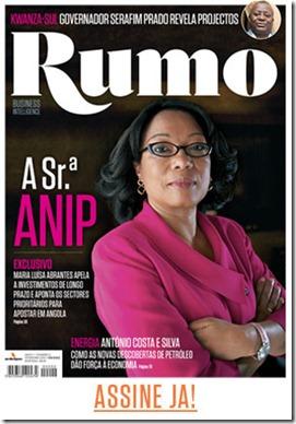 Maria Luísa Abrantes, presidente da ANIP