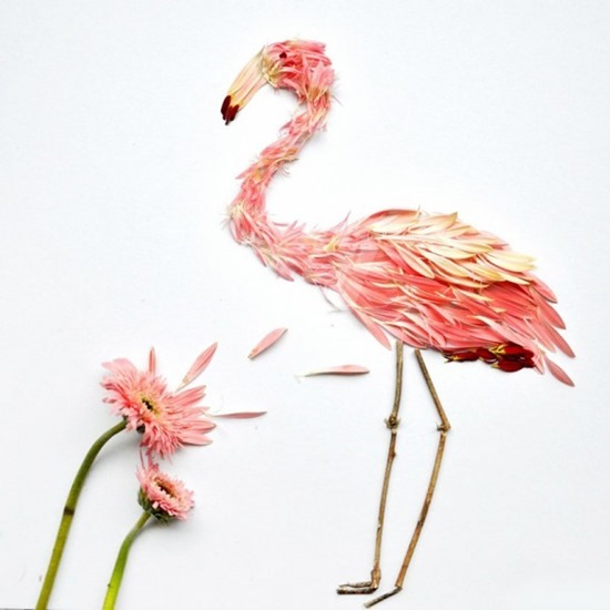Pássaros de flores (3)