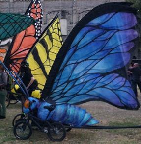 austin bike zoo (1)