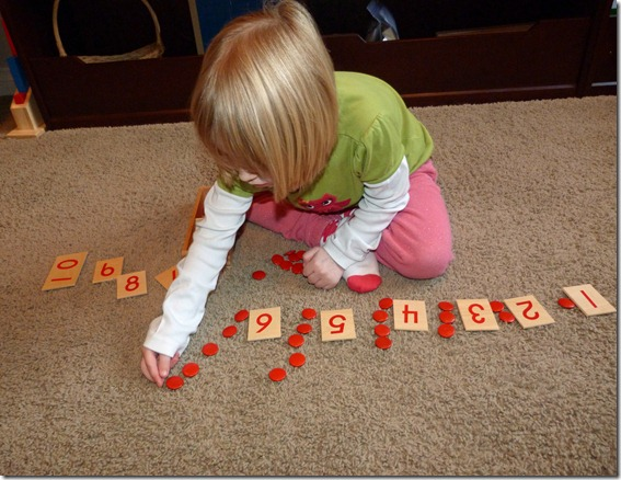 Montessori Wooden Counters and Cards