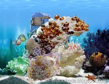 amazing-3d-aquarium-2
