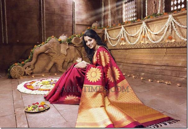 Trisha_Traditional_Saree (7)