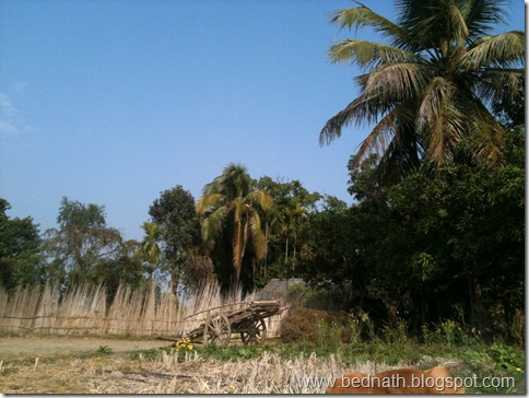 bed nath blog (8)