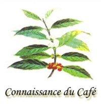 LogoConnaissance