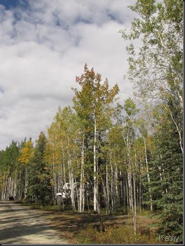Moose Creek Territorial Campground
