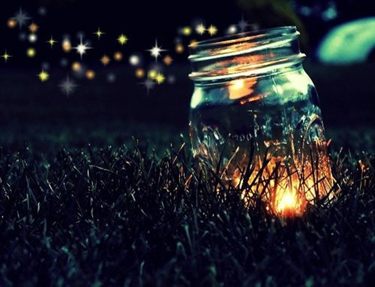 fireflies