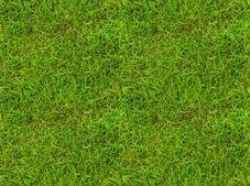 травяной бесшовный фон