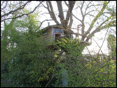 1 TreeHouse