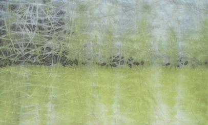 ECO PRINT Schlehenrinde auf Wolle teilweise Eisenbeize