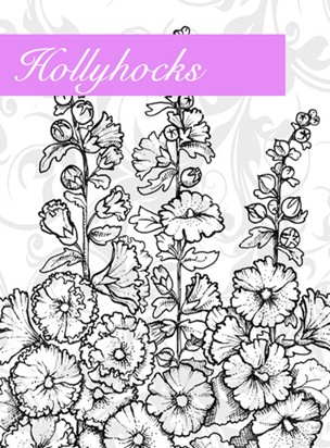 Hollyhocks Graphic