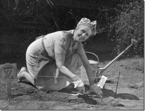 george-marks-mature-woman-working-in-vegetable-garden