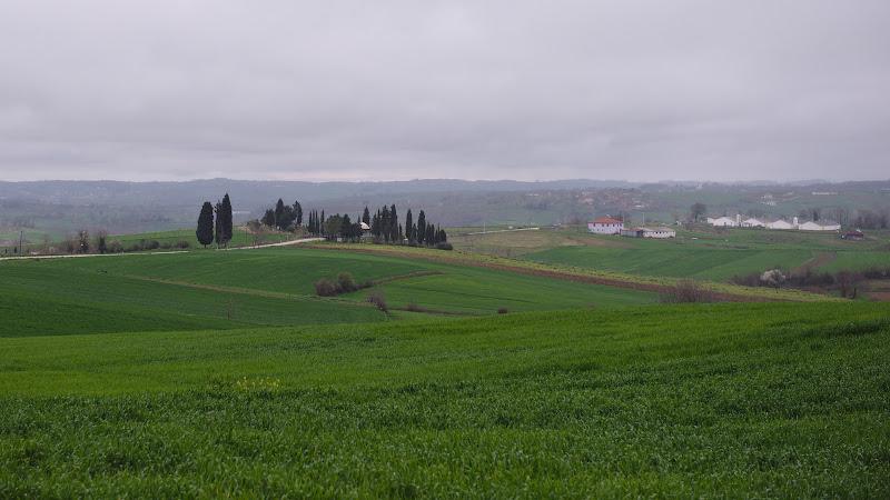 Peisaj ce pare rupt din Toscana.