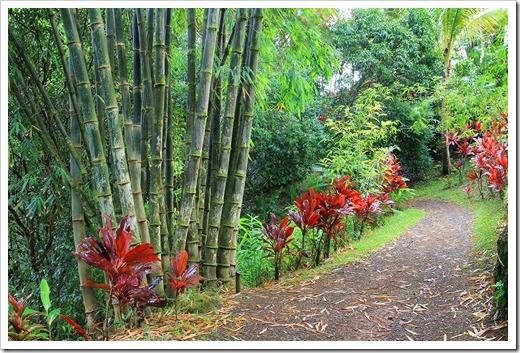 130711_Hana_Highway_Garden_of_Eden_084