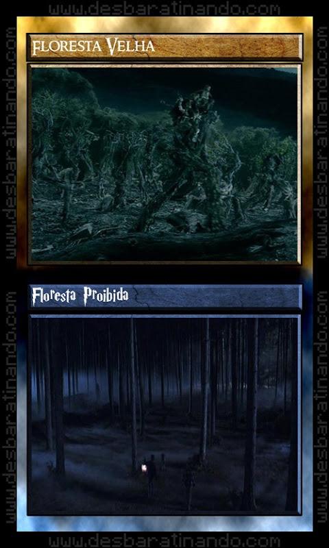 12 floresta velha floresta proibida senhor dos anéis Vs harry potter