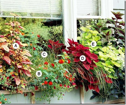 window box3