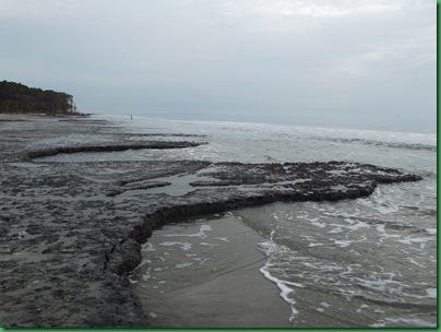 Ocean front walk 022