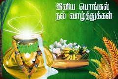 Head News Tamil Pongal 2014 Greetings Hd Wallpapers Pictures