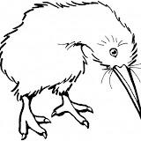 kiwi-bird-coloring-page.jpg
