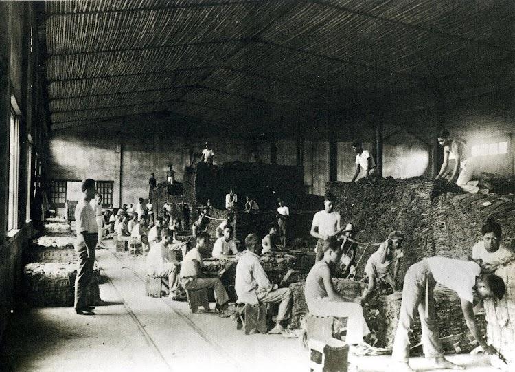 Almacenes Generales de Lal-Loc. Salón de aforo del tabaco. Del libro LA COMPAÑÍA GENERAL DE TABACOS DE FILIPINAS. 1881-1981.JPG
