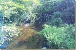 River scene of acciident (Small)