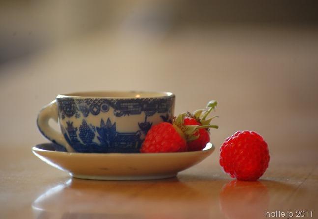 Berry4