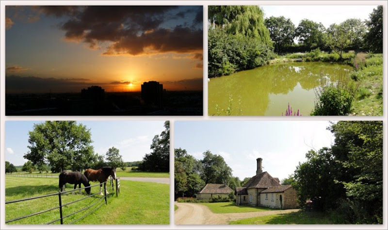 5-fotoalbum Engeland