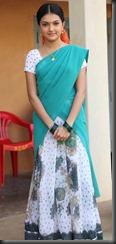 saranya_mohan_cute_in_saree_photos