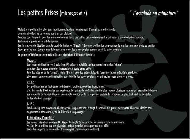 P 03 comentaire petite_1