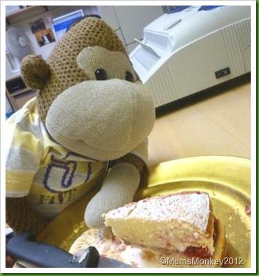Sponge Cake (2)