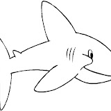 tiburon_3.jpg