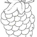uva-2.jpg