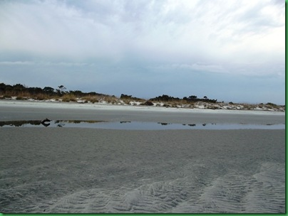 Ocean front walk 103