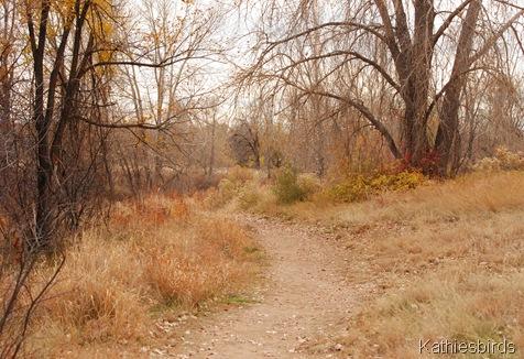 10. trail-kab