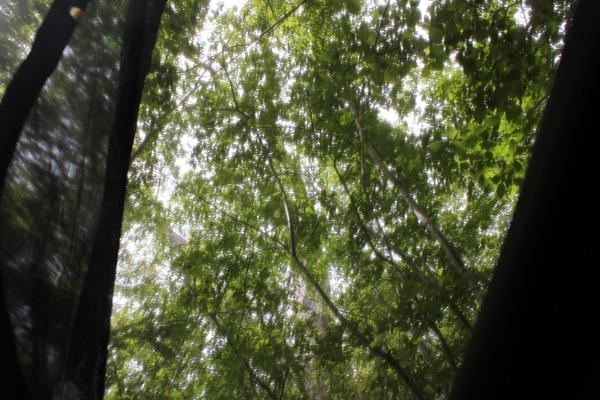 inside hennessy hammock camping