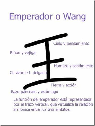 Ideograma Wang, emperador explicado con sus respectivos órganos