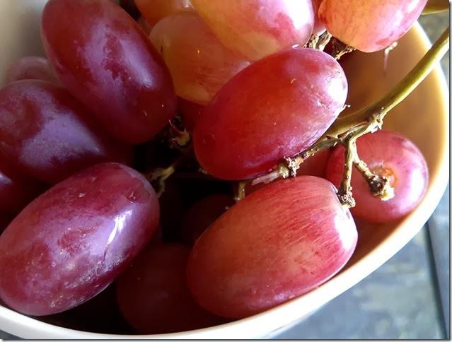 grapes-public-domain-pictures-1 (2316)