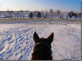 First Snow 119
