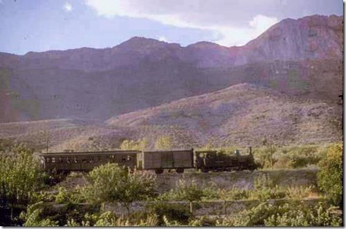 TrainCol (66)