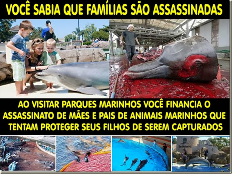 familia_assassinada