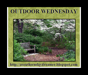 Outdoor-Wednesday-button_thumb1_thum[2]