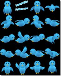 flying twitter for website design blog