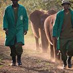 Die letzten Elefantenkinder kommen mit den Pflegern zurück  © Foto: Susanne Schlesinger | Outback Africa Erlebnisreisen
