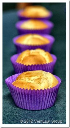 CupcakesIMG_5838